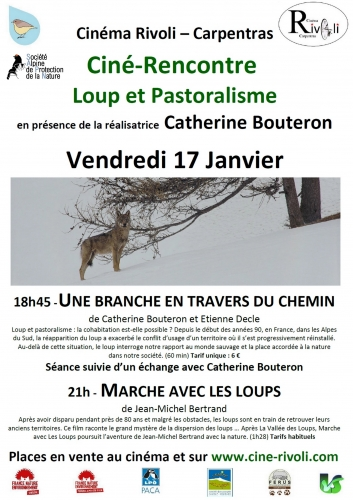 Affiche Ciné Rencontre loup 17 Janvier 2020 2.jpg